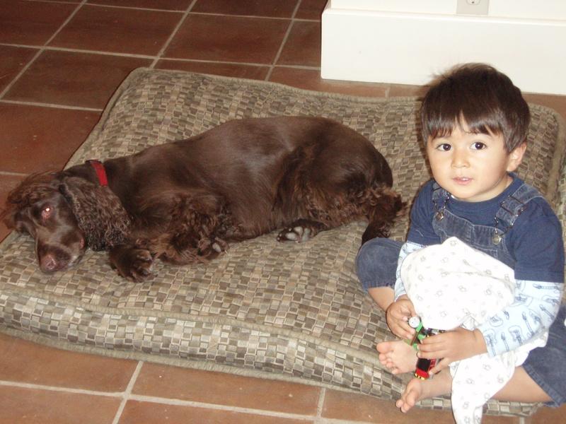 Raja & Aiki (Raja 2) Houston Nov 2010